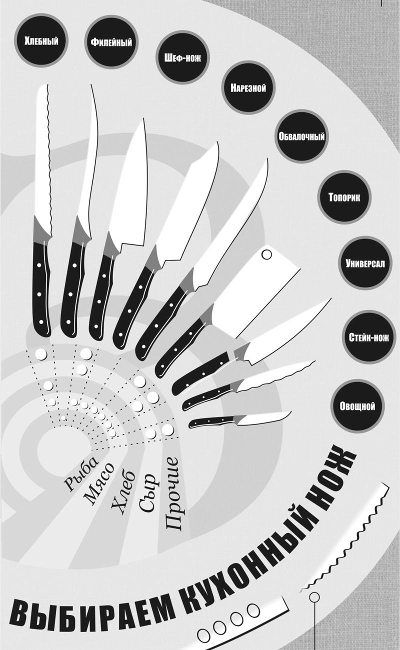 Виды кухонных ножей. Инфографика